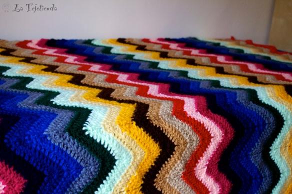Manta_multicolor 011